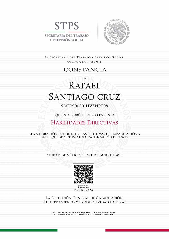 Rafael Santiago Habilidades directivas